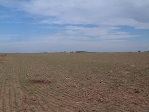 venta de excelentes campos en argentina