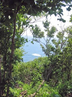 se vende terreno vista  mar  playa oaxaca boqueron a 30 min. pto.escondido