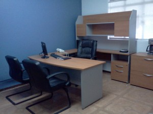 oficinas virtuales guadalajara