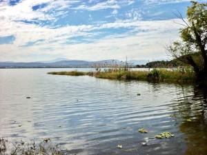 palapa a orillas de la laguna de coatetelco morelos
