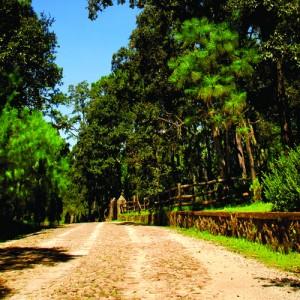 precioso terreno en pinares de tapalpa $270,000