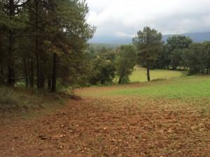 terreno valle de bravo, rentabilidad aproximada del 25% anual