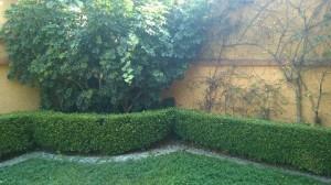 hermosa casa iluminada  en pirules con jardin